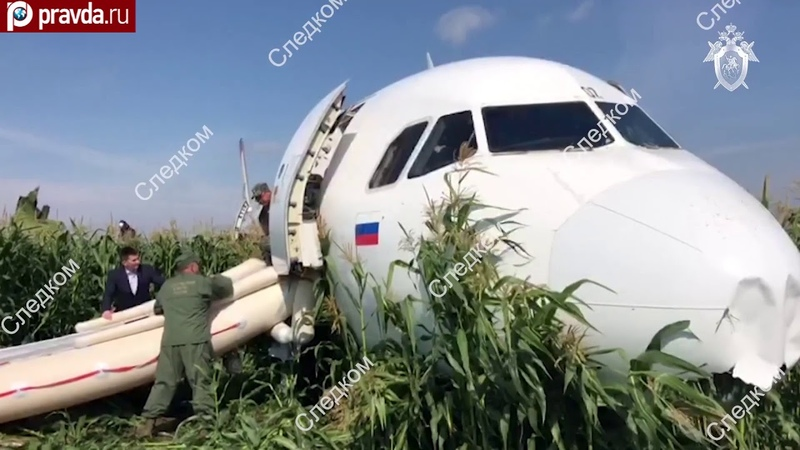Airbus A321 lands on belly in cornfield after jetliner strikes flock of birds during takeoff