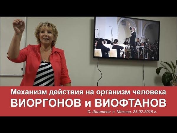 Механизм действия на организм ВИОРГОНОВ и ВИОФТАНОВ. Аврора