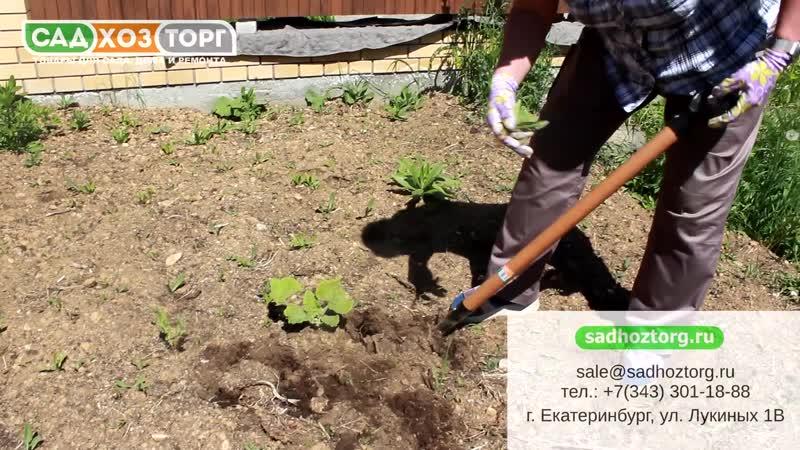 КОРНЕУДАЛИТЕЛЬ ГЕРКУЛЕС Урожайная сотка mp4