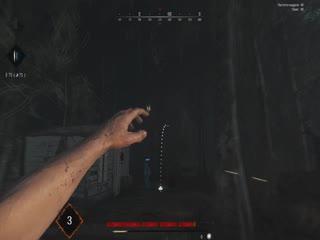 Hunt Showdown webm
