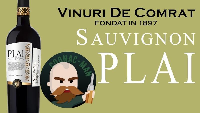 PLAI Moldova Sauvignon 2017