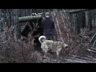 [BUSHCRAFT GR] Primitive technology. Building A-frame shelter  in the wilderness with my dog Bonny. Cooking