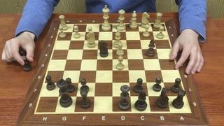 Шахматы Играем русскую партию