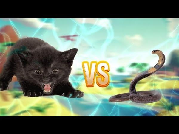 Кошка защищает котят от огромной змеи битва кошки и змеи