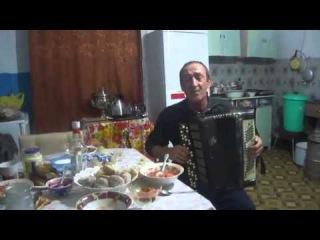 Русский самородок баянист Серёга Мороков. Чайки.