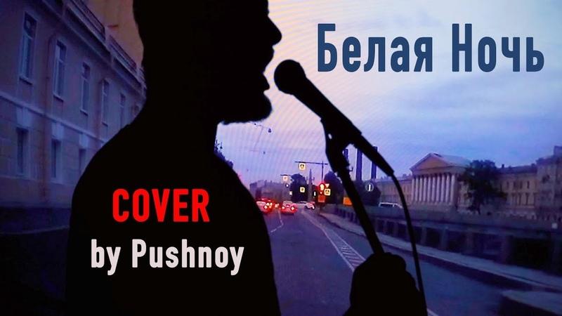 Белая Ночь 🤟 COVER 😬🎸 by Pushnoy Zhuchkov