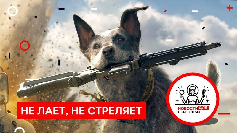 Почему собаки не стреляют в людей Новости для Взрослых 23