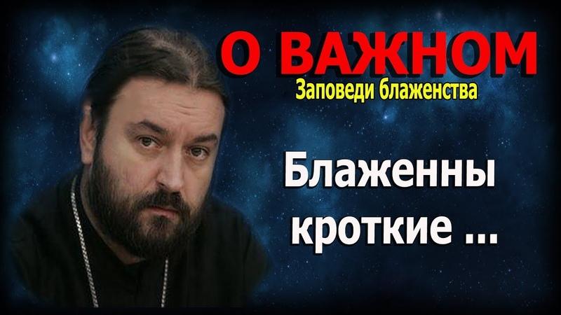 Девять евангельских заповедей блаженства 3 Протоиерей Андрей Ткачёв