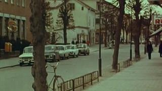 Anita-Swedish Nymphet (1973)