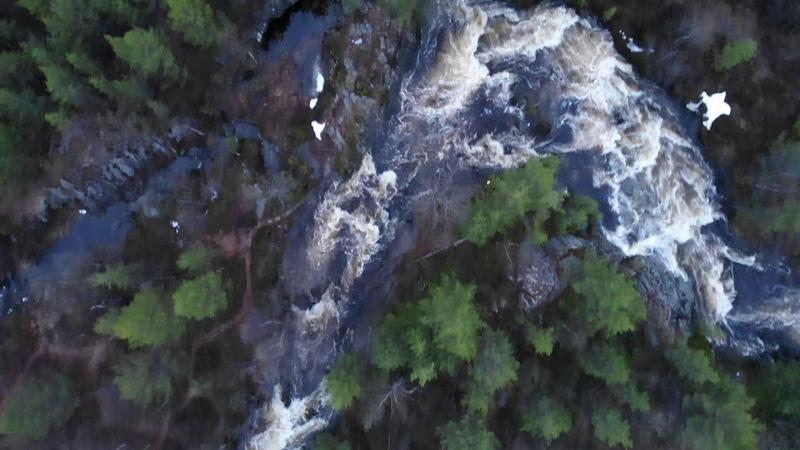 Водопад Шуонийоки лето 2020 Авторы Лариса Зарубанова и Лёха Обадин
