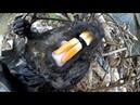 Охота на бобра с приманкой Beaver Creek