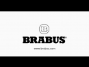 BRABUS electric step for G 4x4²