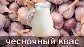 Рецепт чесночного кваса по  рецепту академика Болотова от канала Свой Среди Своих Кулинария