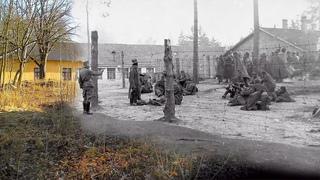 Ад на земле. 80 лет назад под Минском фашисты создали лагерь военнопленных «Шталаг 352»