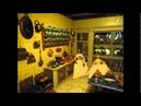 Antique Dollhouse Sara Rothé 1743 Netherlands The Hague Poppenhuis Gemeente museum Den Haag