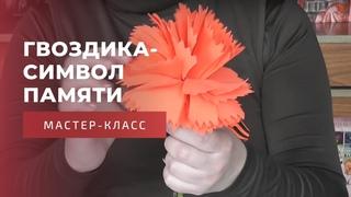 Гвоздика-символ памяти: мастер-класс по изготовлению