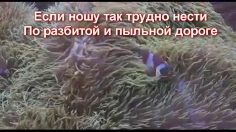 VIDEO 2020 04 05 22 23