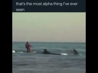 That's the most alpha thing I've ever seen