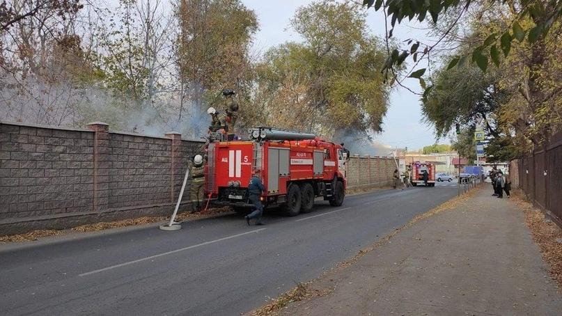 «Пламя полыхало по верхушкам деревьев»: самарцев напугал пожар на кладбище