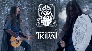Dryante - The Prophet (Tribal OST)