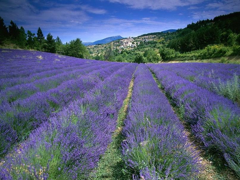 Красивейшие места Франции, изображение №3