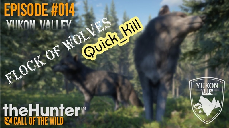 TheHunter COTW Ep 014 Wolves Quick Kill