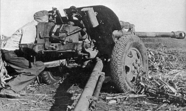 ОДИН В ПОЛЕ ВОИН Один русский солдат - против колонны из 59 танков , кучи бронетранспортеров и взводов мотопехоты . Пылали подбитые танки , бронетранспортеры и все вокруг, груды трупов сгоревших