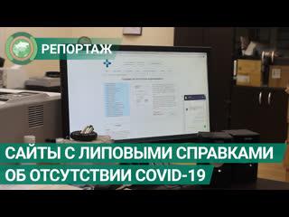 Активисты требуют заблокировать сайты с липовыми справками об отсутствии COVID-19. ФАН-ТВ
