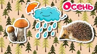 Осень - Карточки Домана - Развивающие мультики для детей