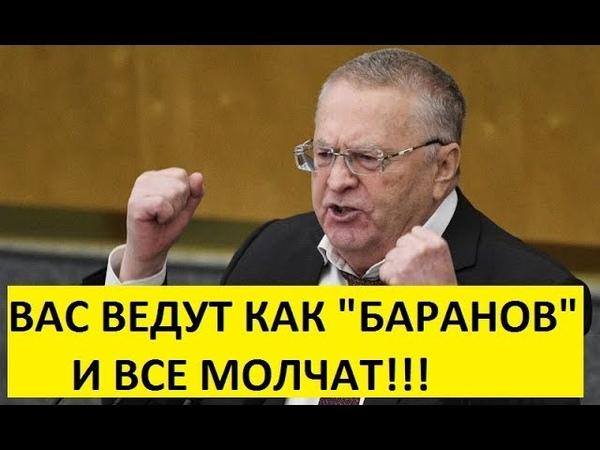 Жириновский предложил отобрать у олигархов все богатства