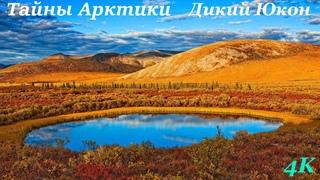 Тайны Арктики / Arсtic Secrets (2017) S02E02 Дикий Юкон / Yukon Wild            ВИДЕО 4K