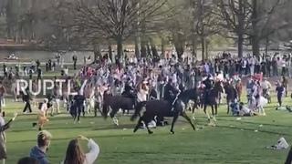 Belgium: Police on horseback break up giant April Fool's 'party' in Brussels