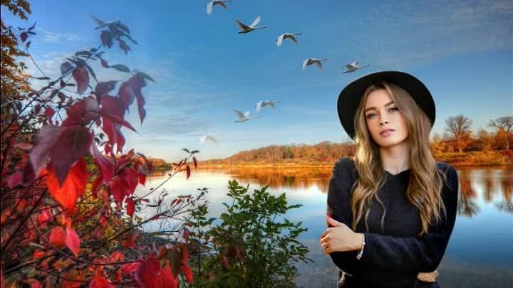 Не ждите лебеди Людмила Щербина