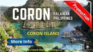 🌄Scuba diving cruise #Coron Philippines Palawan, Wreck diving, barracuda lake, apo reef and dugongs