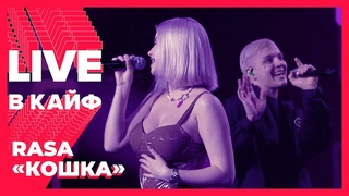 RASA — Кошка // LIVE в КАЙФ на МУЗ-ТВ