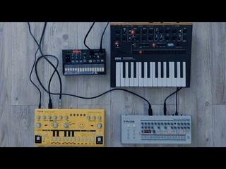 Techno jam korg monologue/Behringer TD-3/Korg Volca FM/ Roland TR-09