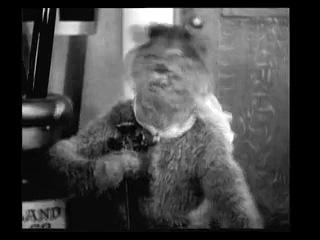 Психоделика 1914 год - Кот и Микки Маус