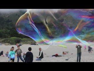 Giant Stinson - Beach Bubbles