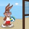 Волейбол в Керчи
