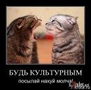 Фотоальбом человека Olga Emelyanova