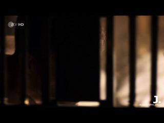 Фрагмент 8 Отель Адлон 2 семьи 3 судьбы Семейная сага 2 серия