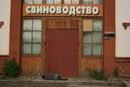 Фотоальбом Кирилла Джалалова