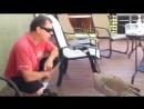 Как нужно разговаривать с животными