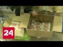 В Петербурге задержана банда подпольных банкиров Россия 24