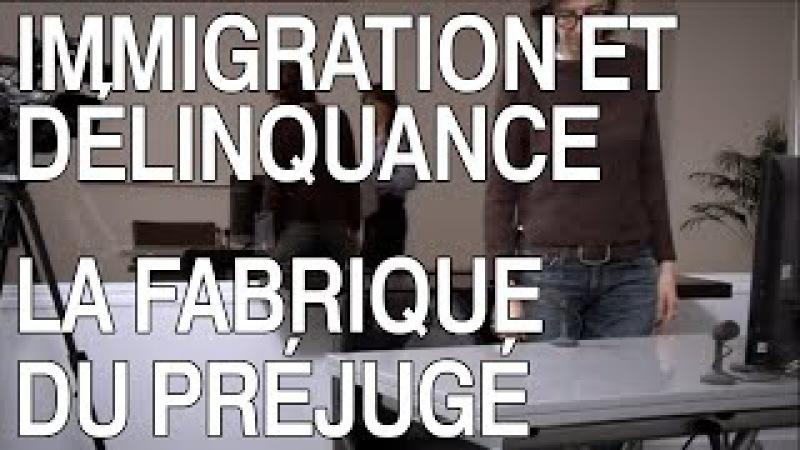 Immigration et délinquance la fabrique du préjugé (22) - INFRAROUGE