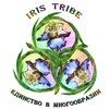 Iris Tribe - студия танца ATS® в Новороссийске