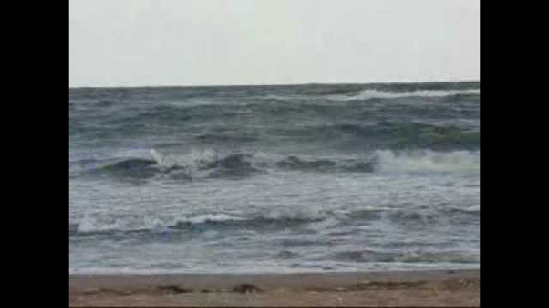 Нина Пантнелеева У моря у синего моря mp4