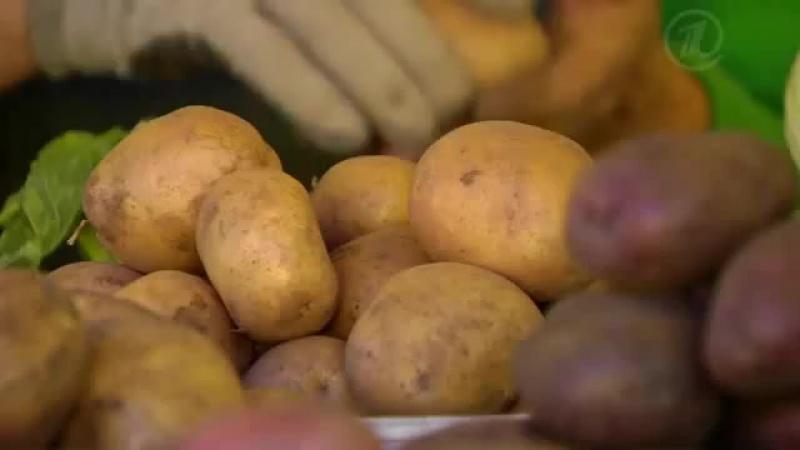 Картошка - чем полезна и как готовить Правильное питание. Советы диетолога