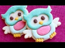 Cute Owl Cookies - No decorating skills required all done without icing