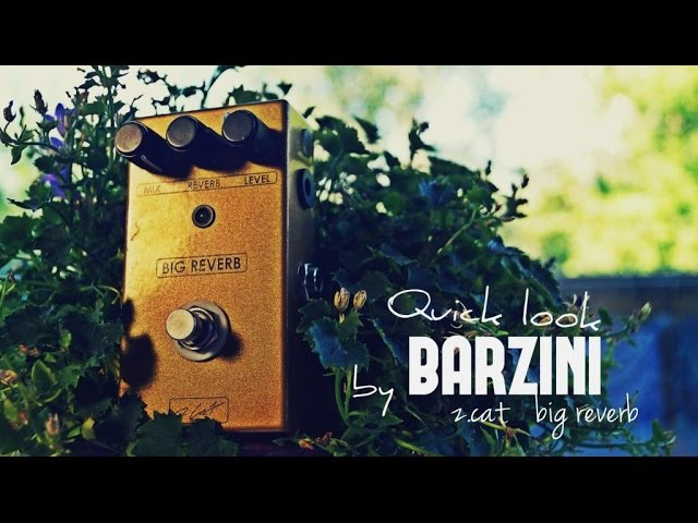 Quick look by BARZINI - Z.Cat Big Reverb